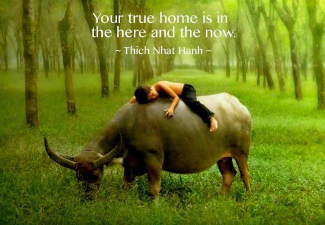 true home